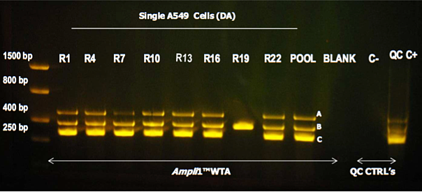 WTA_Kit_single_cell.png